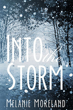 COVER REVEAL: Into the Storm by Melanie Moreland