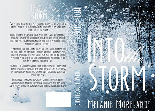 into storm cover_full_wrap_600