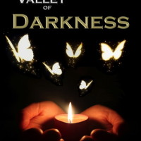 REVIEW: Valley of Darkness by AB Whelan