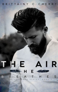 Guest Review: The Air He Breathes by Brittainy C Cherry