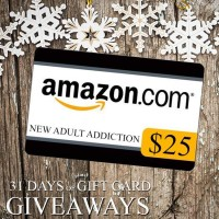 $25 GIVEAWAY-Wild Reckless by Ginger Scott