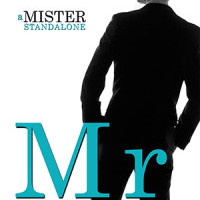 Review: Mr. Perfect by JA Huss