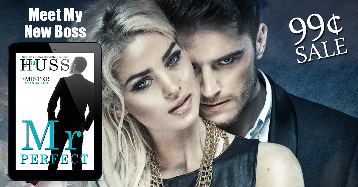99¢ ONE WEEK ONLY!  Mr. Perfect by JA Huss