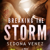 GIVEAWAY and EXCERPT: Breaking the Storm by Sedona Venez